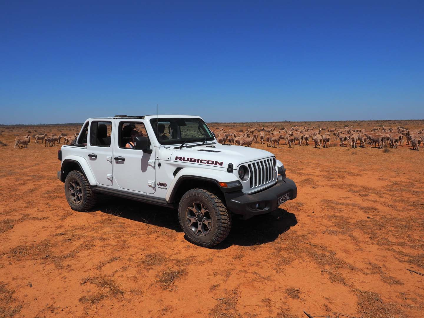 Feature Jeep Wrangler Rubicon - Part 1 of 5