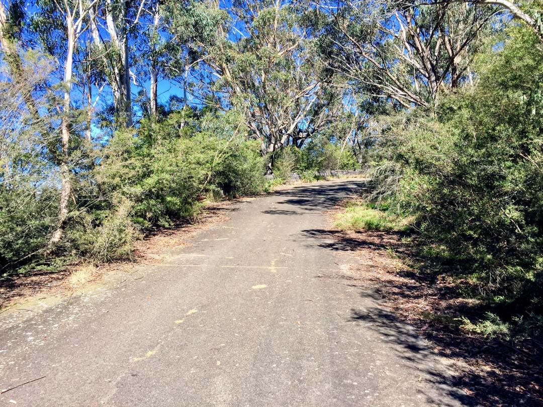 And this is Catalina Park Raceway looks now… overgrown with cracks in the bitumen.